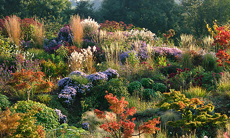 The Autumn Garden