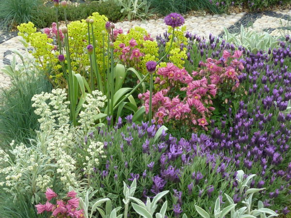 Planning your garden borders andrew jordan garden design for Garden design planting schemes
