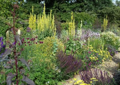Long-Planting-Border