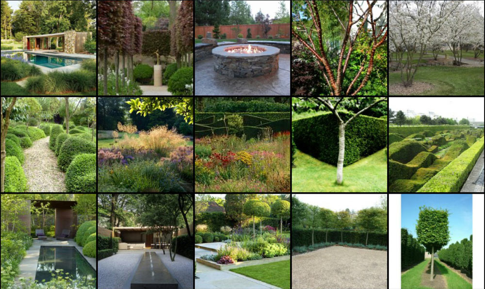 Large Contemporary Garden In Wiltshire Andrew Jordan