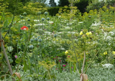 Great-Dixter-Planting-Forms