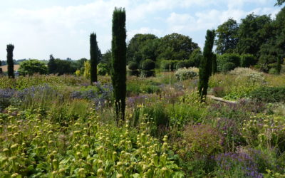 Two Inspirational Contemporary Gardens