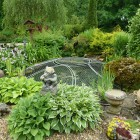 Before-Pond-Pic
