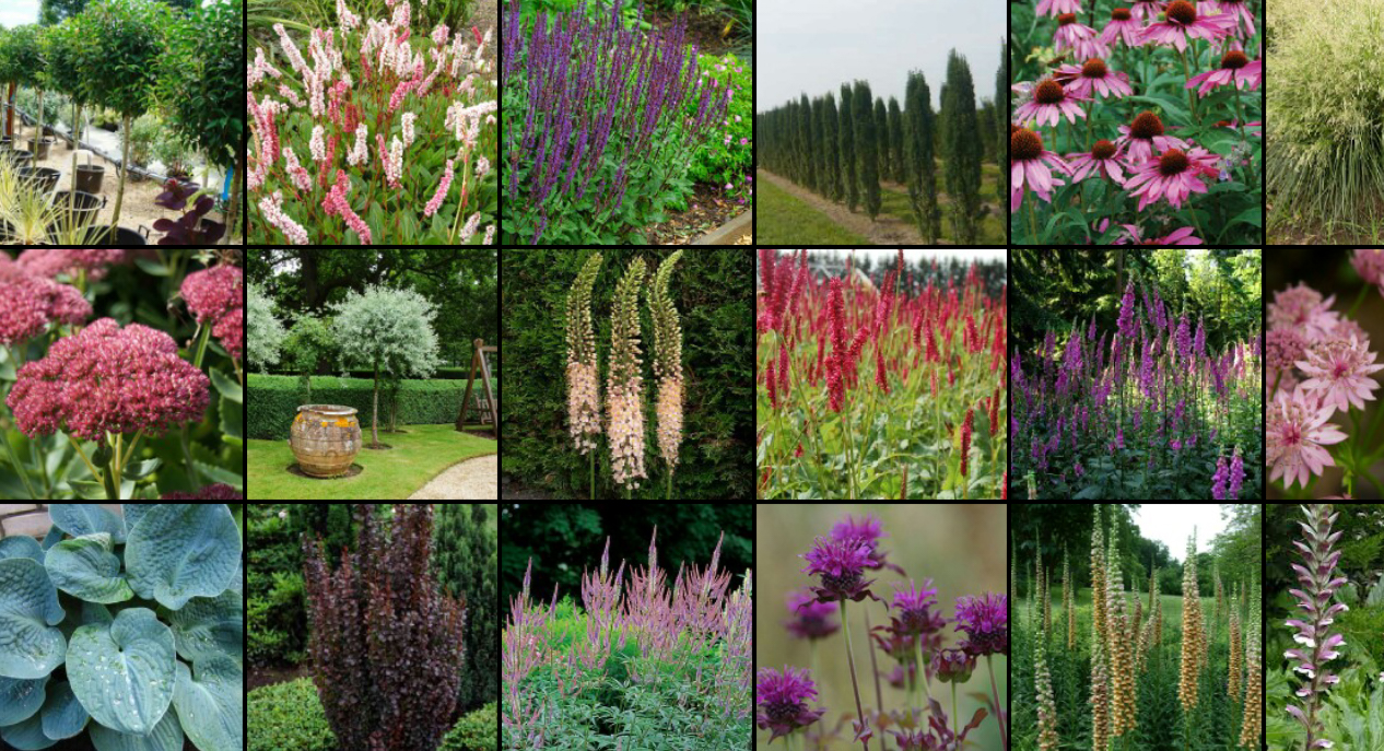 Garden Design Mood Board contemporary garden in cirencester - andew jordan garden