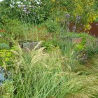 Soft-Planting-with-Grasses