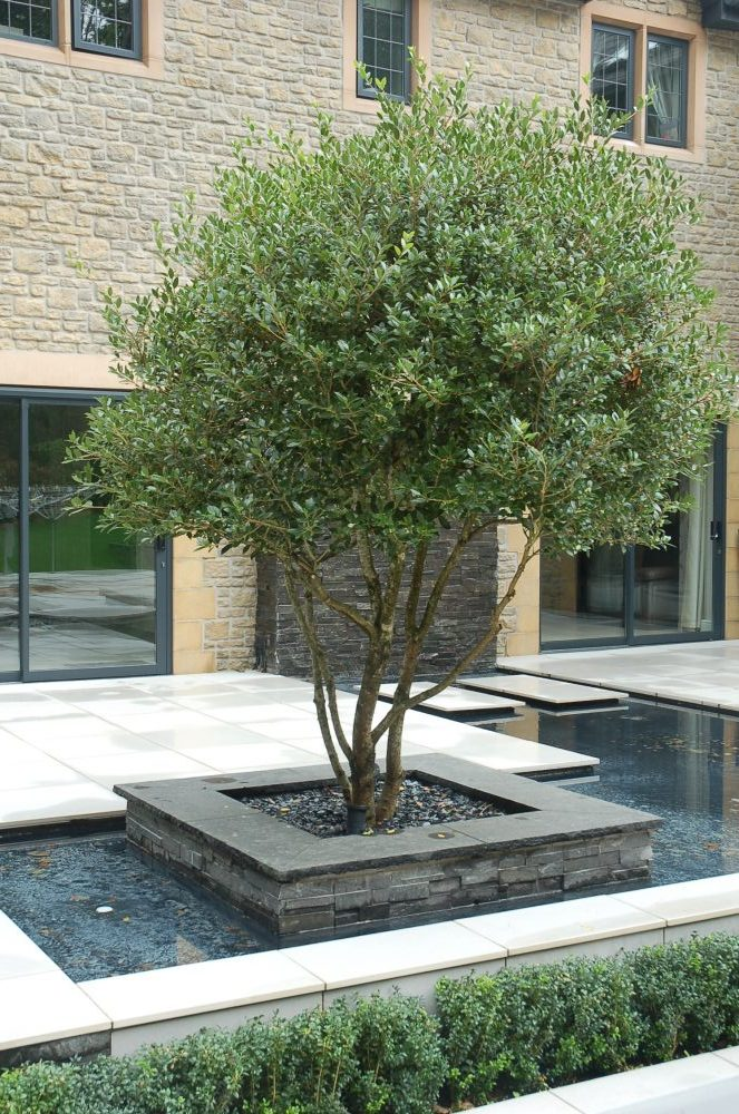 Large contemporary garden design in Bristol, Andrew Jordan ...